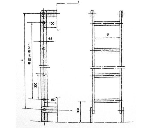 国际米兰乐投合作钢质直梯